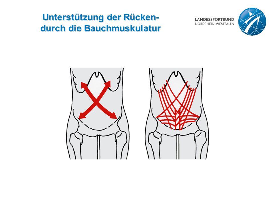 Unterstützung der Rücken- durch die Bauchmuskulatur
