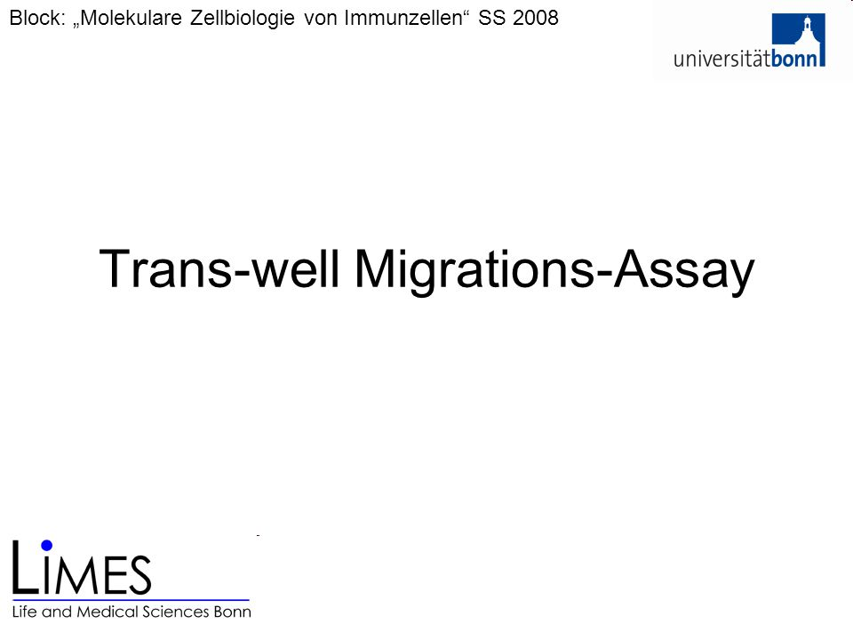 Trans-well Migrations-Assay