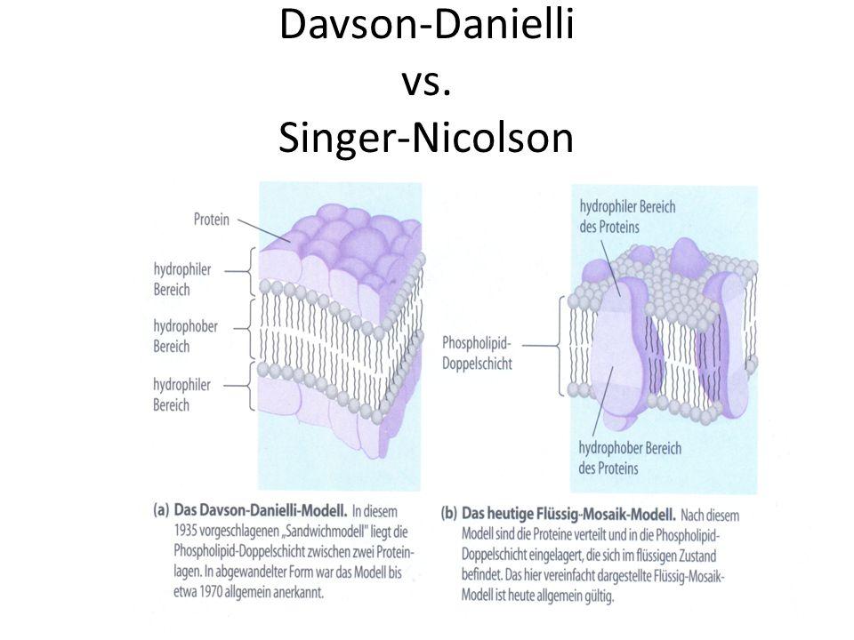 Davson-Danielli vs. Singer-Nicolson
