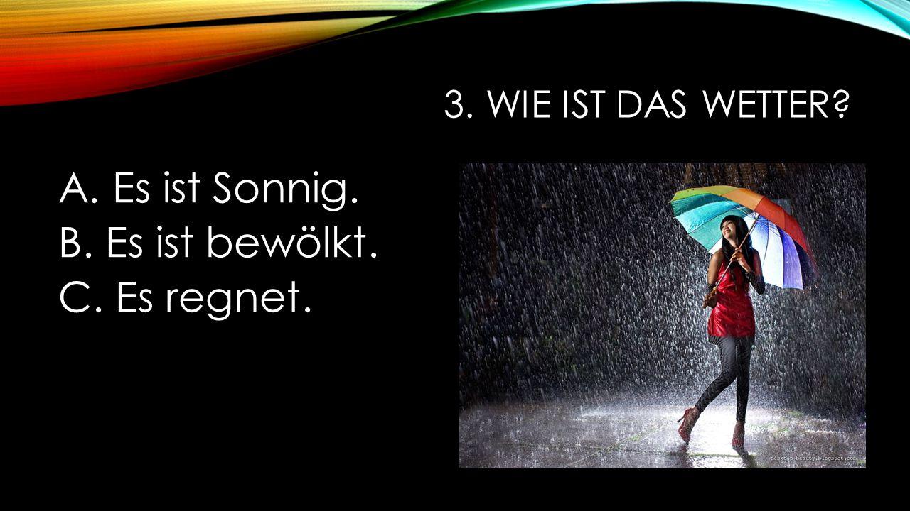 3. Wie ist das Wetter Es ist Sonnig. Es ist bewölkt. Es regnet.