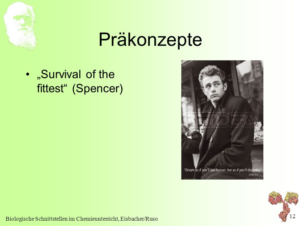 "Präkonzepte ""Survival of the fittest (Spencer)"