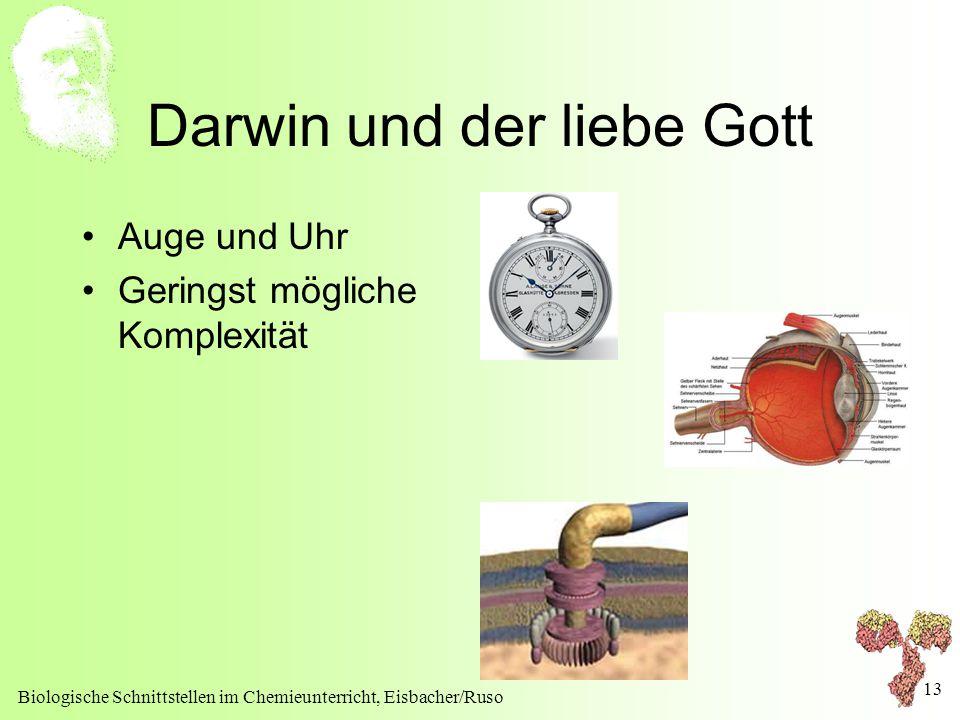 Darwin und der liebe Gott