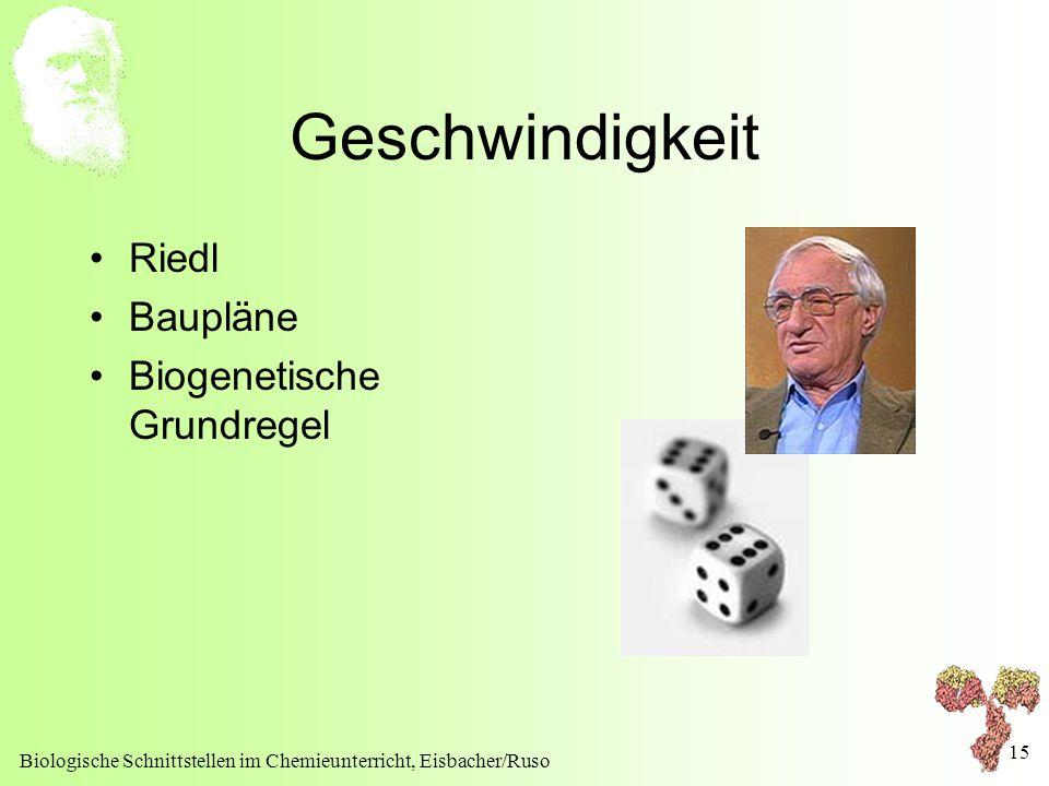 Geschwindigkeit Riedl Baupläne Biogenetische Grundregel