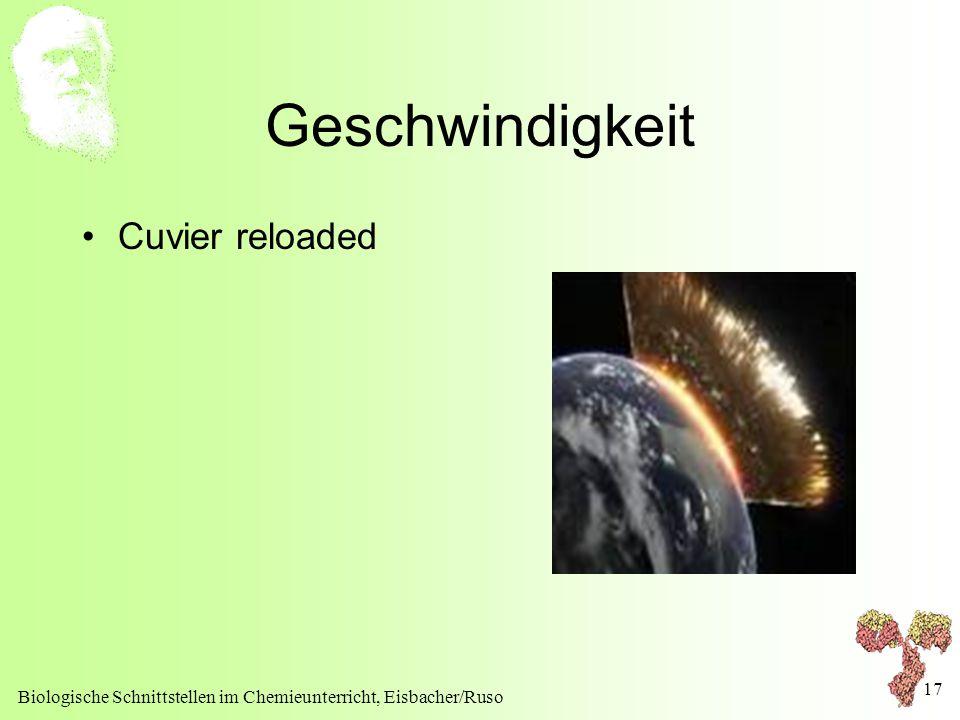 Geschwindigkeit Cuvier reloaded