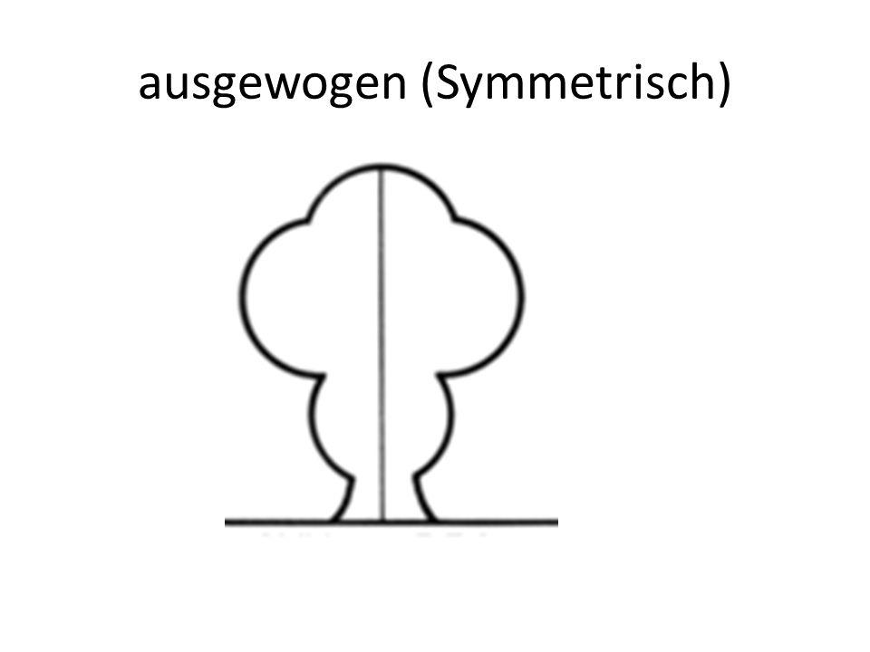 ausgewogen (Symmetrisch)