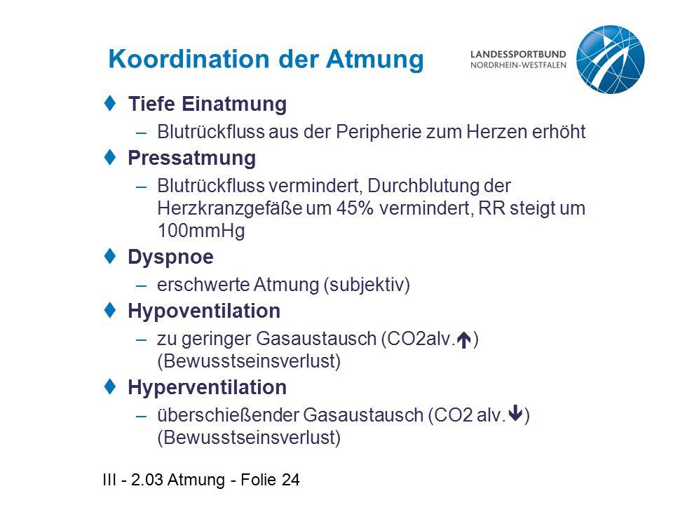 Koordination der Atmung