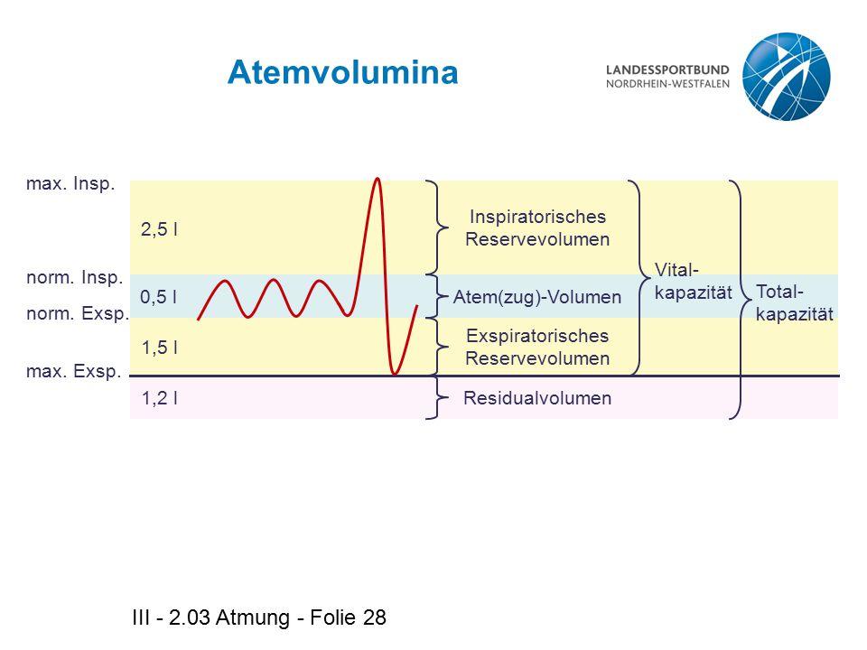 Atemvolumina III - 2.03 Atmung - Folie 28 max. Insp. 2,5 l