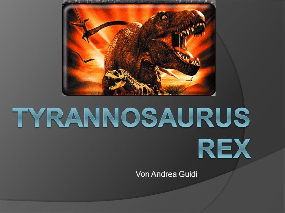 Tyrannosaurus Rex Von Andrea Guidi