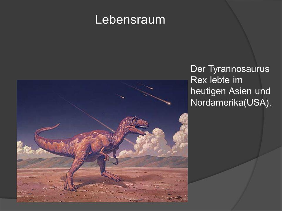 Lebensraum Der Tyrannosaurus Rex lebte im heutigen Asien und Nordamerika(USA).