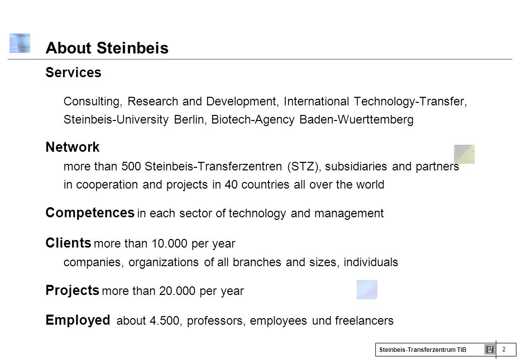 About Steinbeis Services