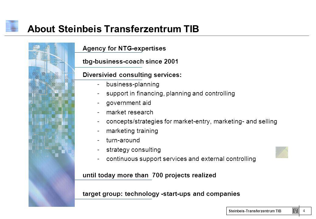 About Steinbeis Transferzentrum TIB
