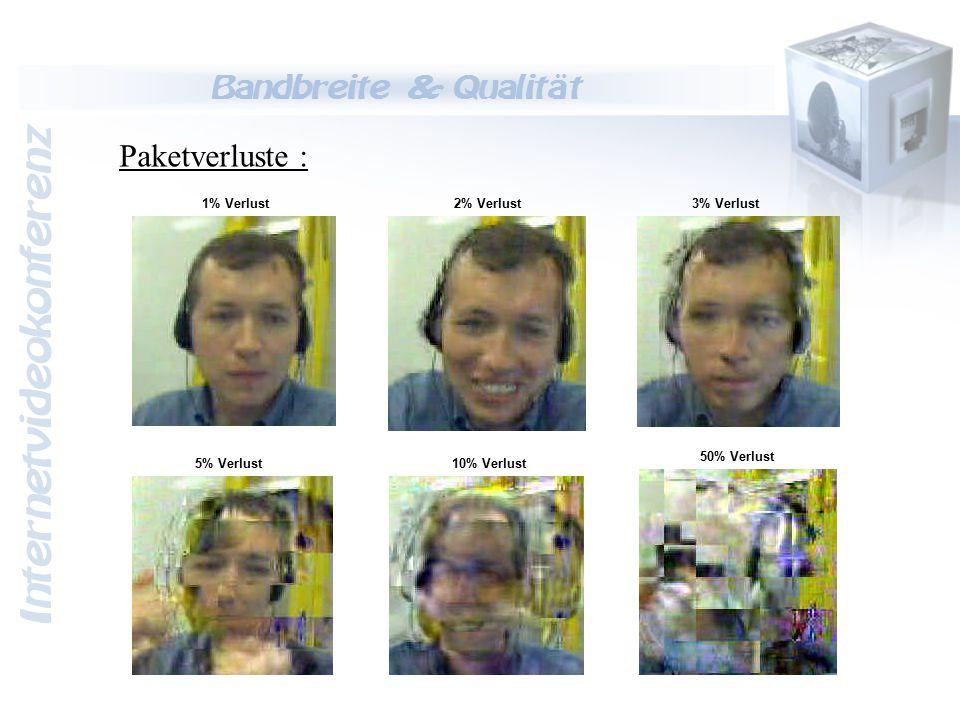 Internetvideokonferenz