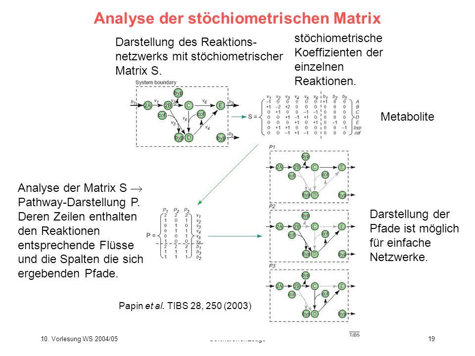 Analyse der stöchiometrischen Matrix