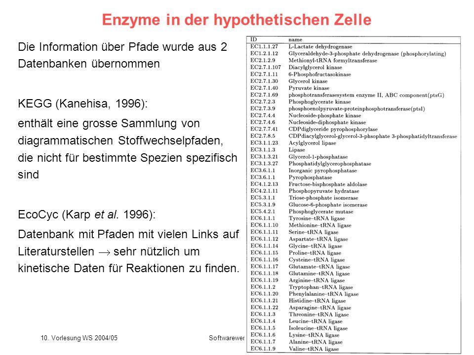 Enzyme in der hypothetischen Zelle