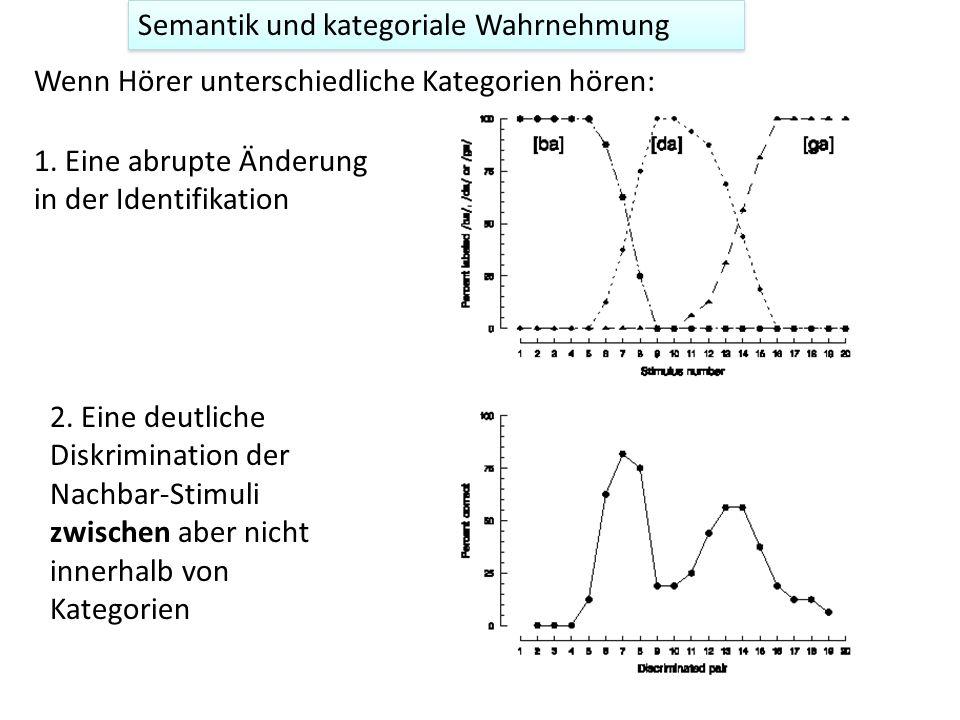 Semantik und kategoriale Wahrnehmung