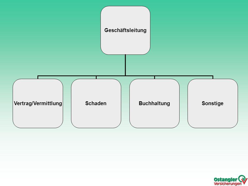 Geschäftsleitung Vertrag/Vermittlung Schaden Buchhaltung Sonstige