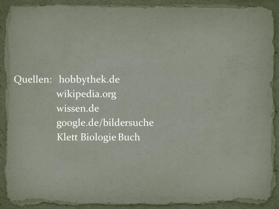 Quellen: hobbythek. de wikipedia. org wissen. de google