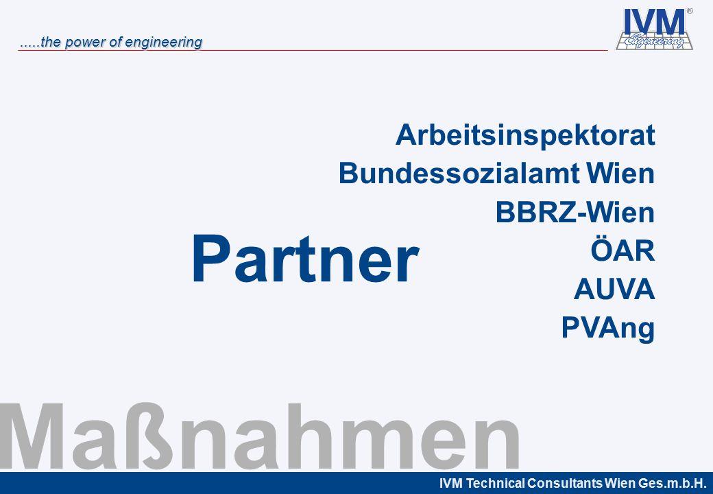 Maßnahmen Partner Arbeitsinspektorat Bundessozialamt Wien BBRZ-Wien