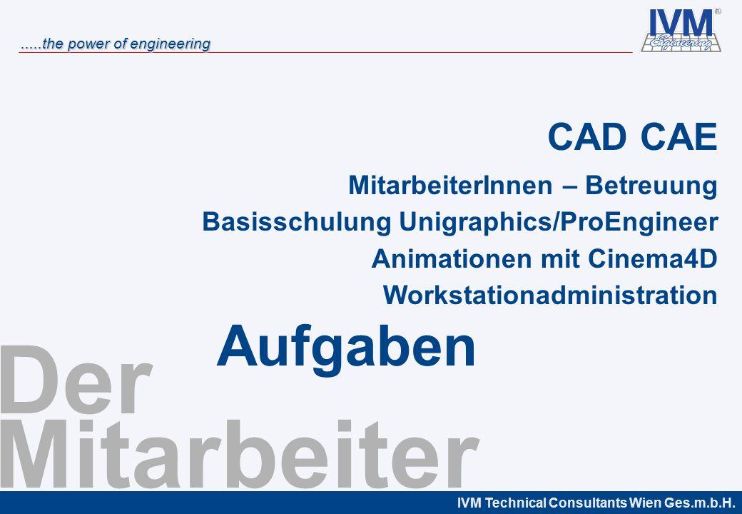 Der Mitarbeiter Aufgaben CAD CAE MitarbeiterInnen – Betreuung
