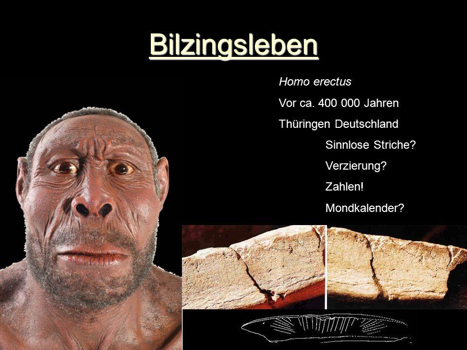 Bilzingsleben Homo erectus Vor ca. 400 000 Jahren