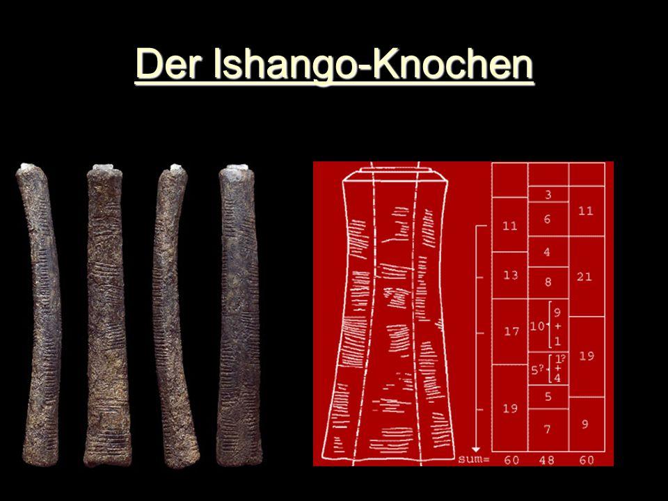 Der Ishango-Knochen Ca. 20 000 Jahre Uganda-Congo Sinnlose Striche