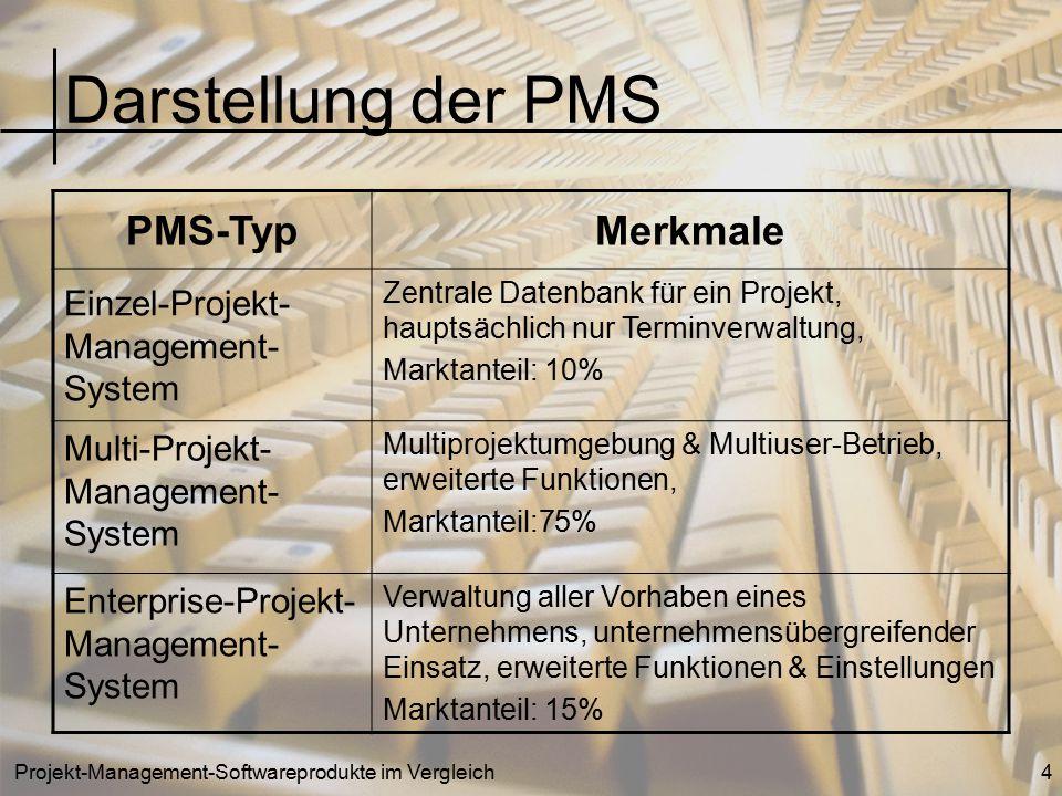 Darstellung der PMS PMS-Typ Merkmale Einzel-Projekt-Management-System