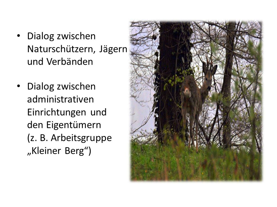 Dialog zwischen Naturschützern, Jägern und Verbänden