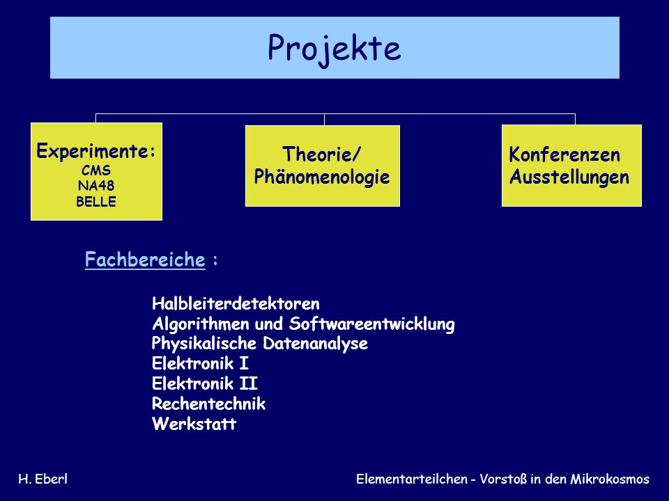 Projekte Experimente: Theorie/ Konferenzen Phänomenologie