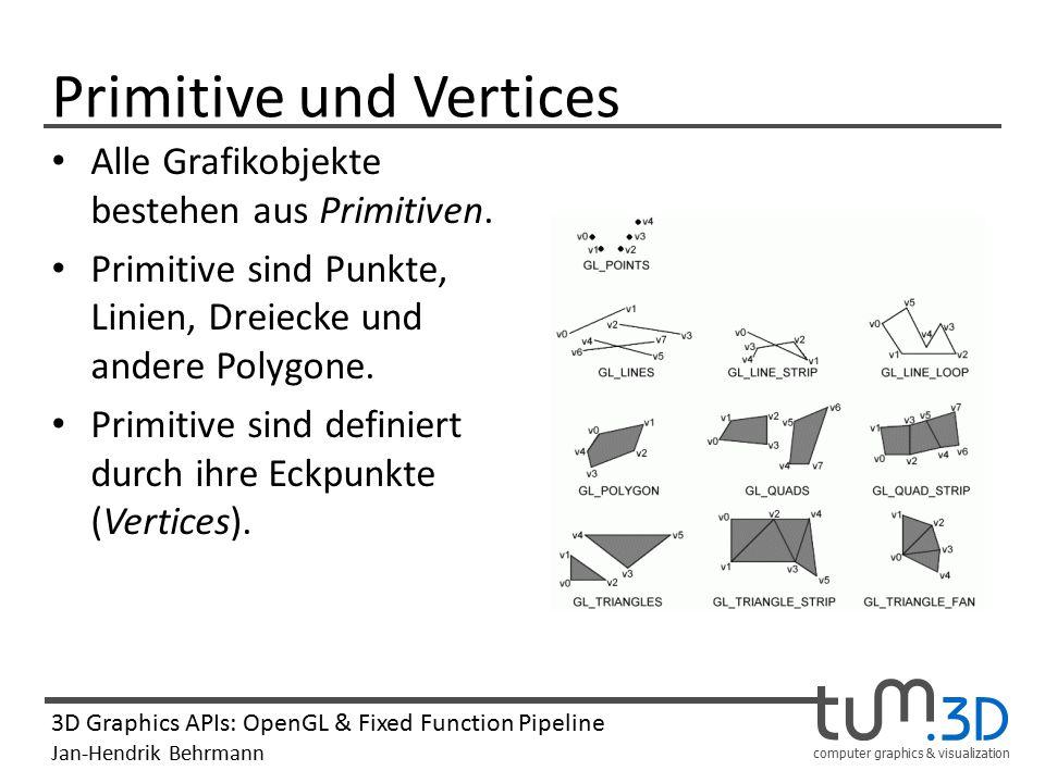 Primitive und Vertices
