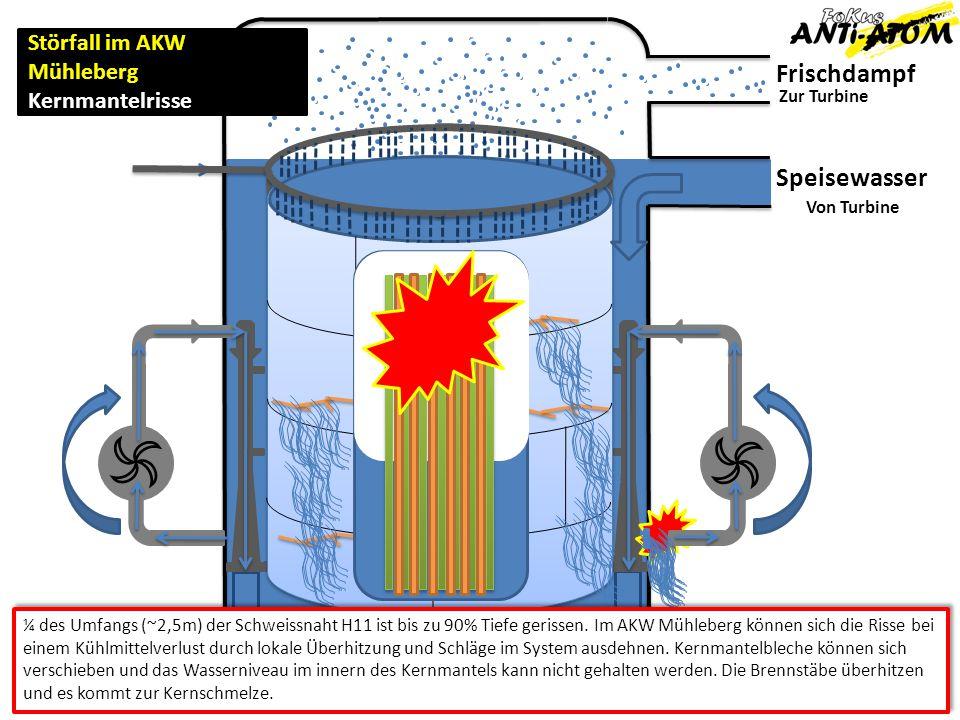 Frischdampf Speisewasser Störfall im AKW Mühleberg Kernmantelrisse