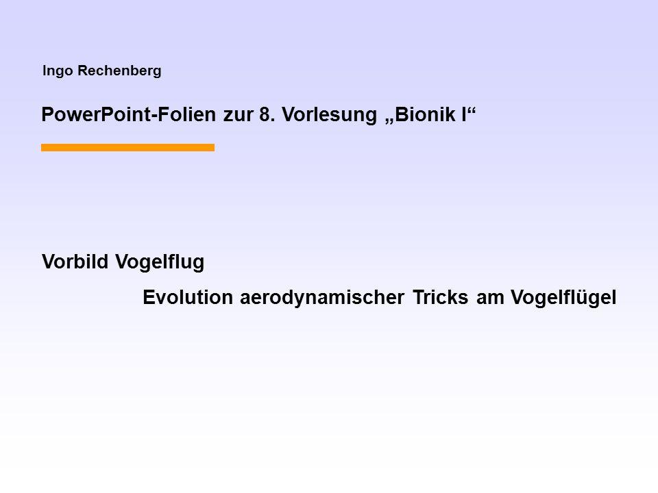 """PowerPoint-Folien zur 8. Vorlesung """"Bionik I"""