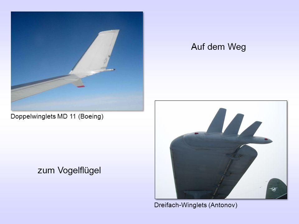 Auf dem Weg zum Vogelflügel Doppelwinglets MD 11 (Boeing)