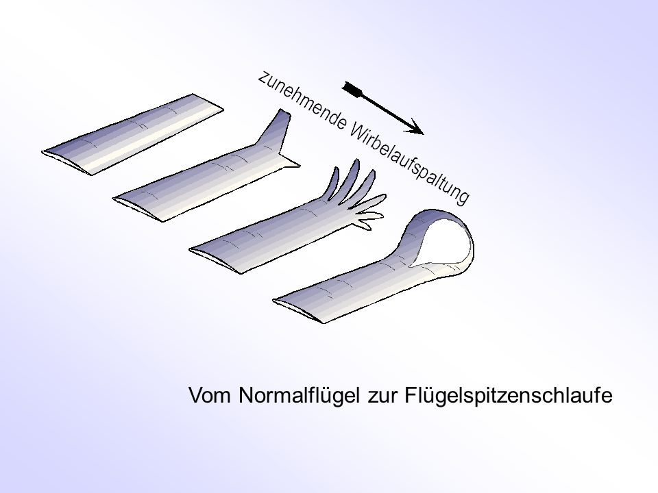 Vom Normalflügel zur Flügelspitzenschlaufe