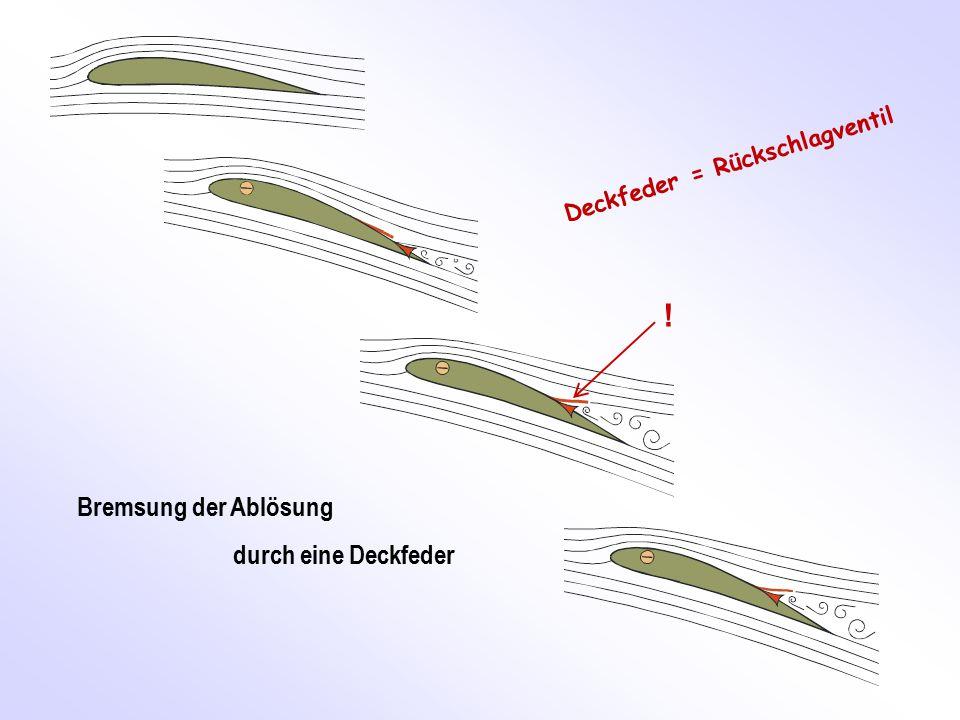! Bremsung der Ablösung durch eine Deckfeder