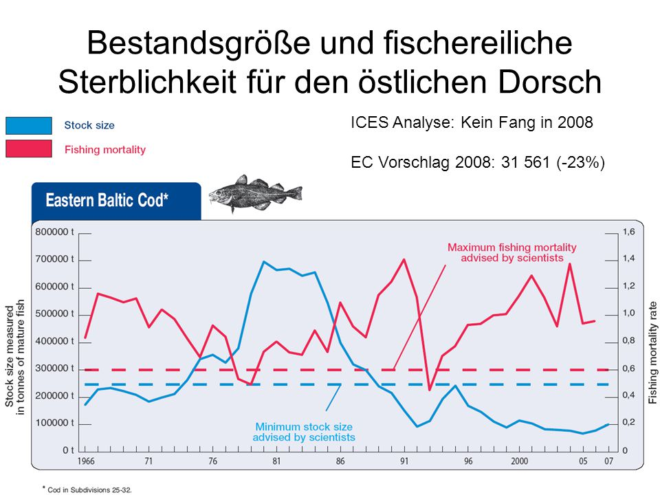 Bestandsgröße und fischereiliche Sterblichkeit für den östlichen Dorsch