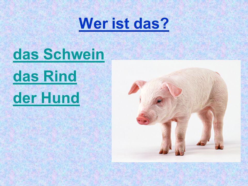 Wer ist das das Schwein das Rind der Hund