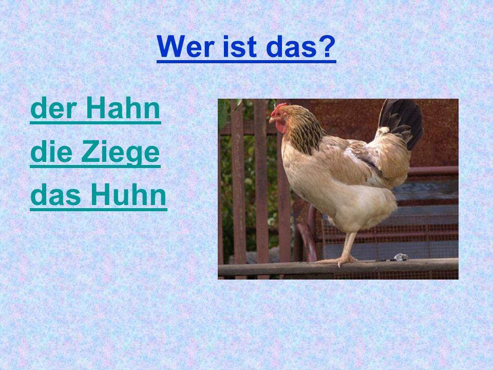 Wer ist das der Hahn die Ziege das Huhn