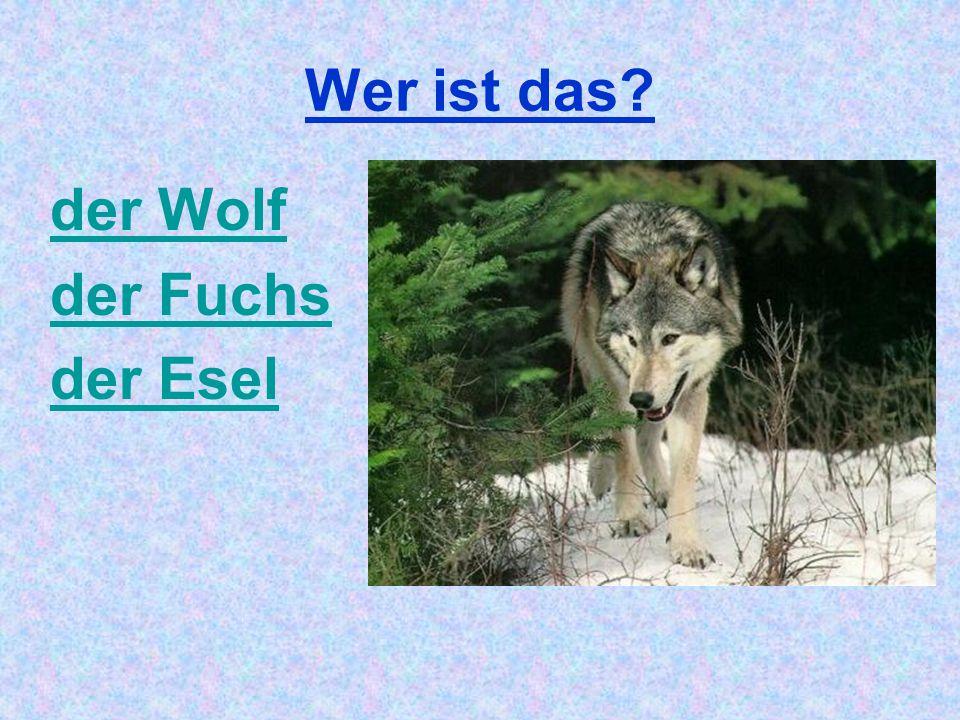 Wer ist das der Wolf der Fuchs der Esel