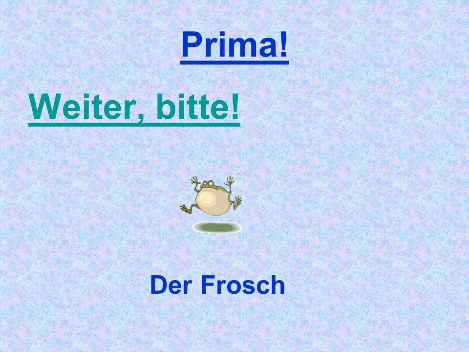 Prima! Weiter, bitte! Der Frosch