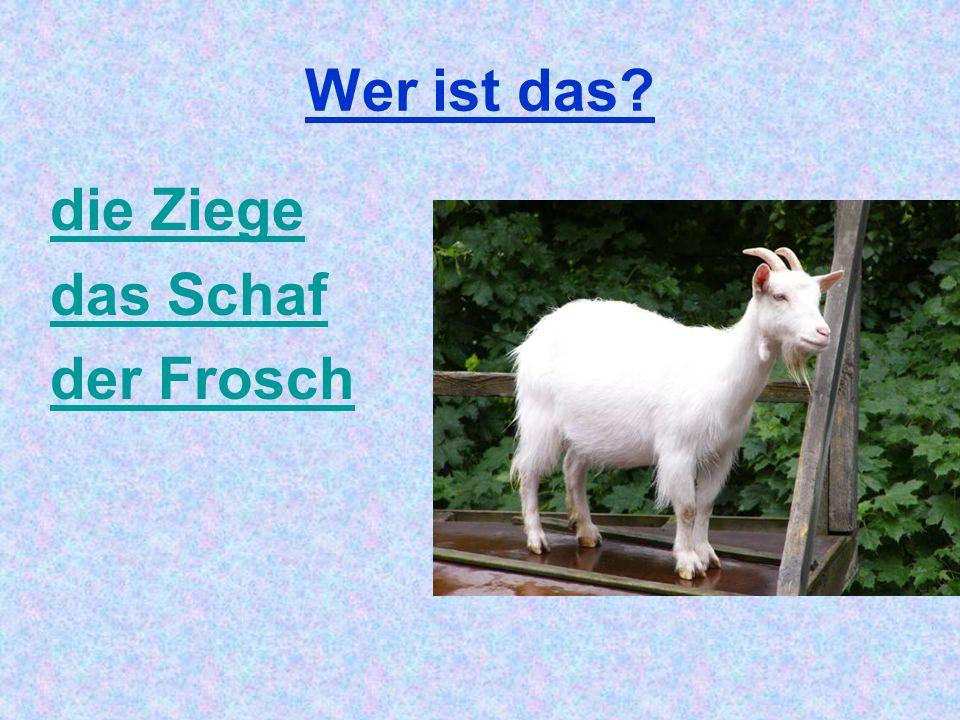 Wer ist das die Ziege das Schaf der Frosch