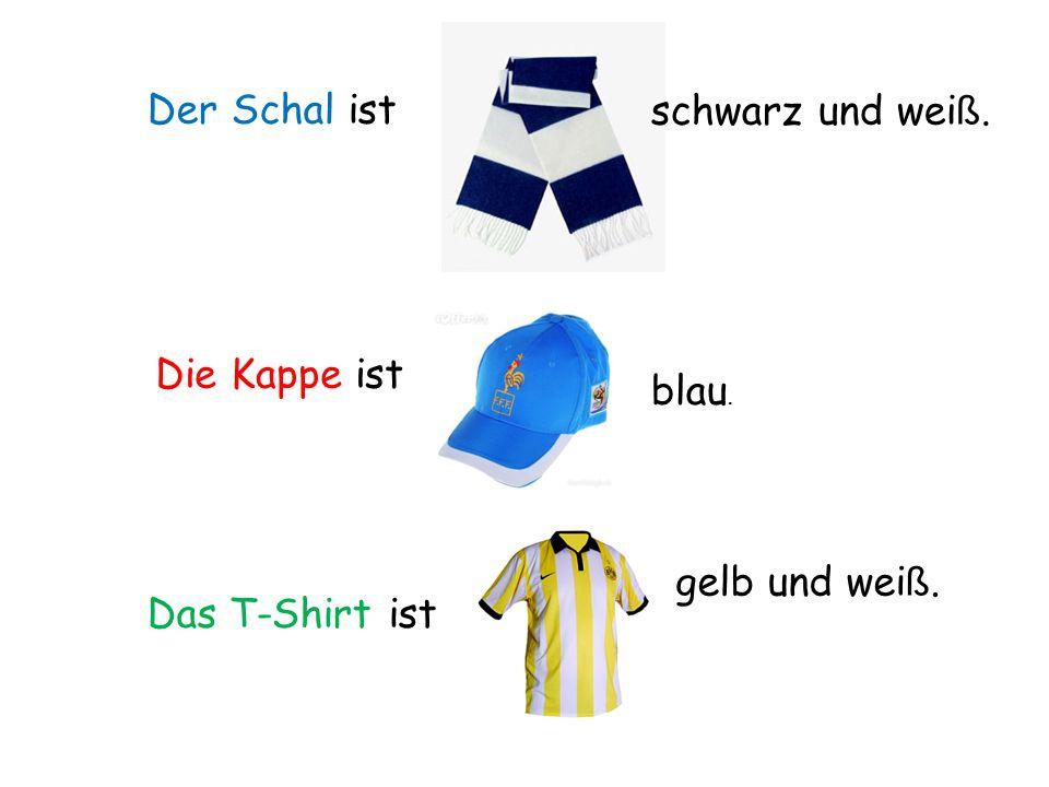 Der Schal ist schwarz und weiß. Die Kappe ist blau. gelb und weiß. Das T-Shirt ist