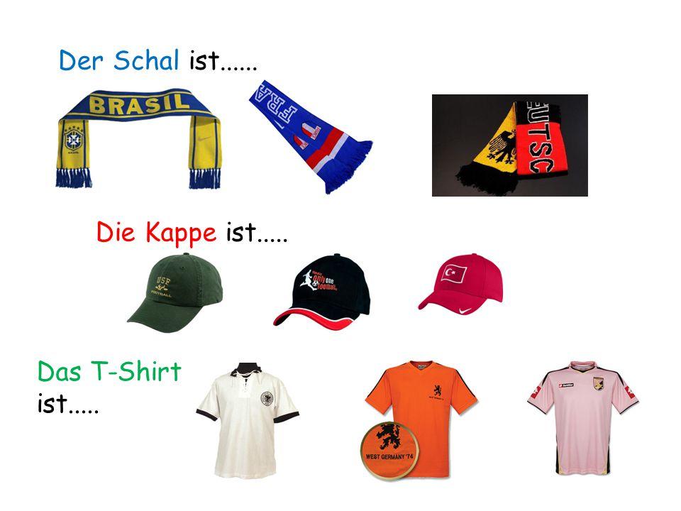 Der Schal ist...... Die Kappe ist..... Das T-Shirt ist.....