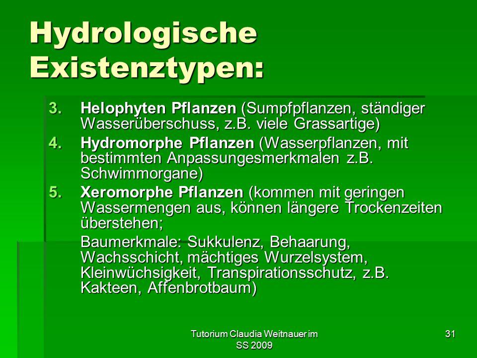 Hydrologische Existenztypen: