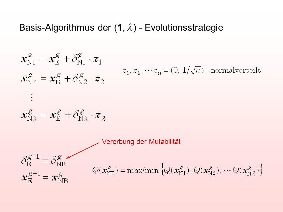 Basis-Algorithmus der (1, l ) - Evolutionsstrategie