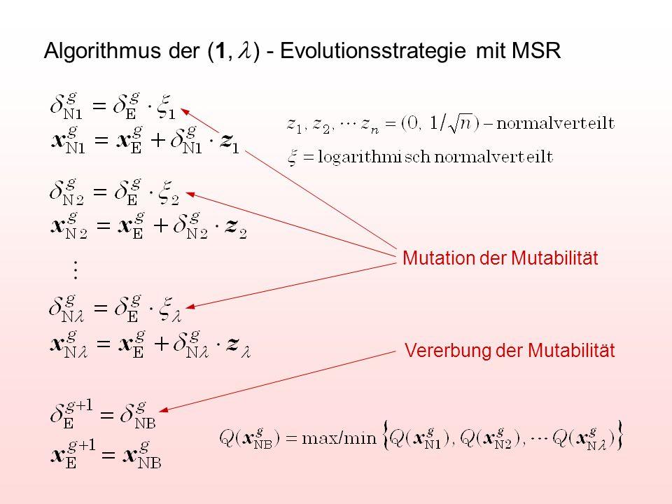 Algorithmus der (1, l ) - Evolutionsstrategie mit MSR