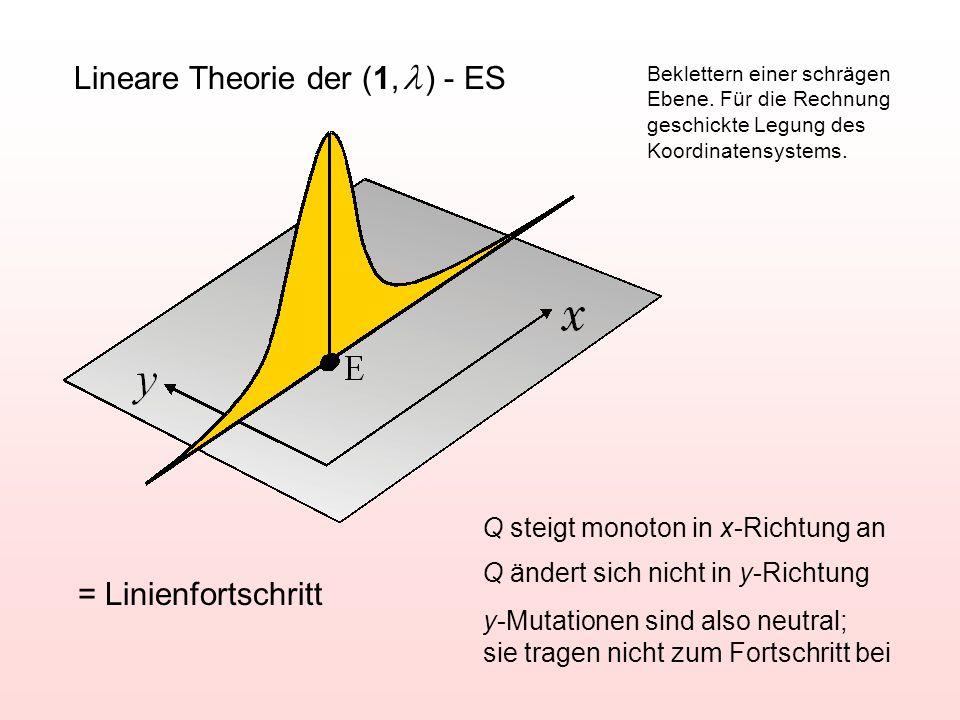 Lineare Theorie der (1, l ) - ES