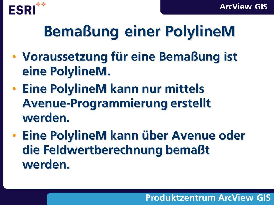 Bemaßung einer PolylineM