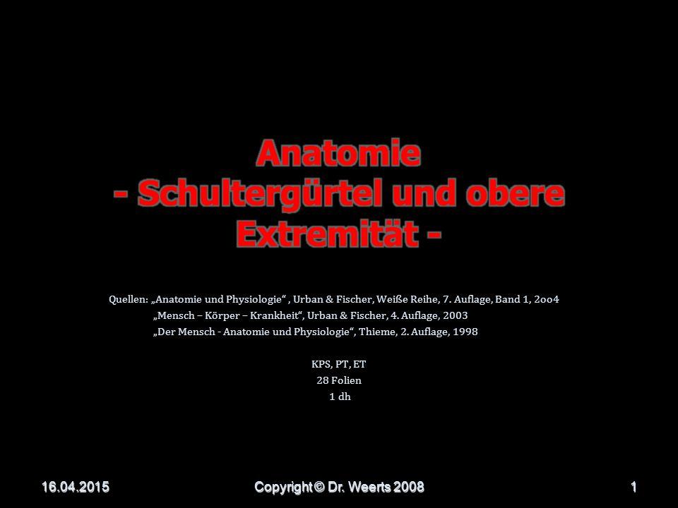 Anatomie - Schultergürtel und obere Extremität - - ppt video online ...
