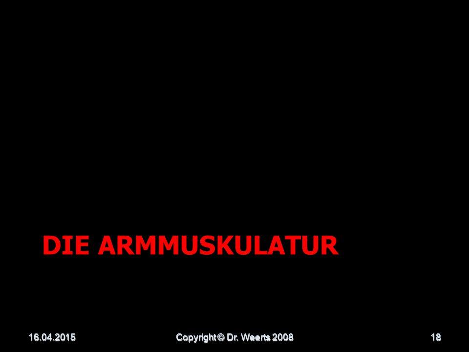 Die Armmuskulatur 13.04.2017 Copyright © Dr. Weerts 2008