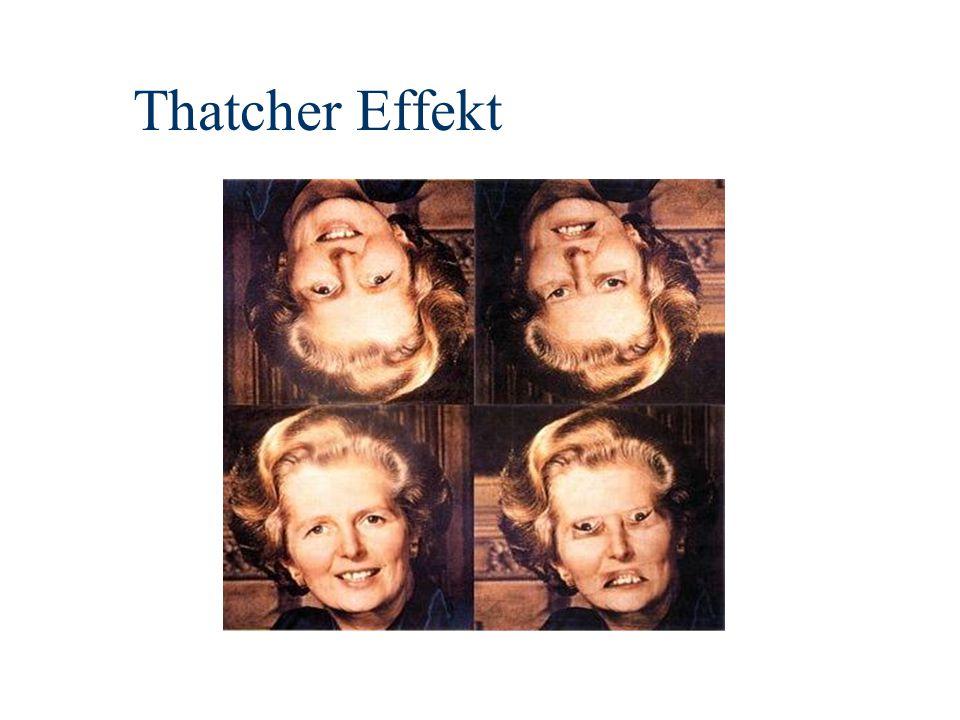 Thatcher Effekt